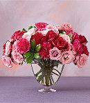 Ten Pink & Red Carnations in a Vase