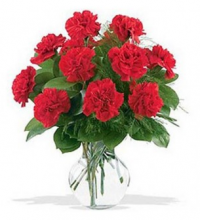 10 Pcs Red Carnations in a Vase