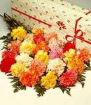 10pcs Mix Carnations in Box