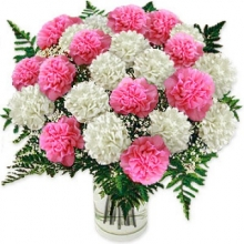 20pcs Mix Carnations in Box