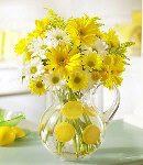 Yellow Gerbera w/ Mums in a Vase