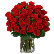 36 Red Roses Sweet Inspiration