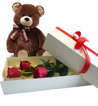 3 Red Roses in Box with Bear