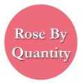 ROSES By Quantity